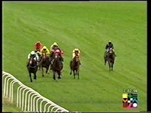 2002 Syan Maiden Stakes