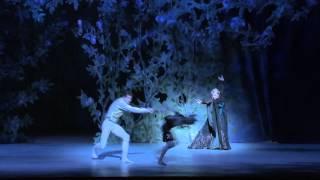 Ballett | Tornerose | Nasjonalballetten | Operaen | Pjotr Tsjajkovskij