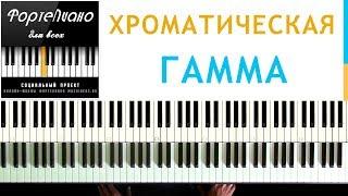 🎹 Фортепиано ДЛЯ ВСЕХ. Урок 5 - ХРОМАТИЧЕСКАЯ гамма.