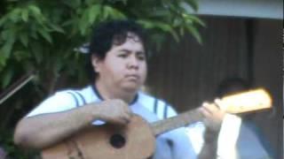 danza del negro 2 naranjos veracruz.MPG