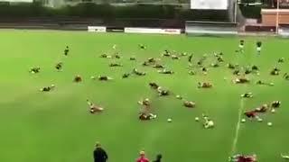 Массовая тренировка правдоподобно имитировать боль на футболе