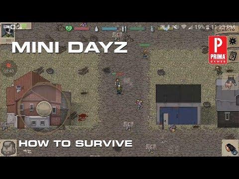 Mini Dayz Guide