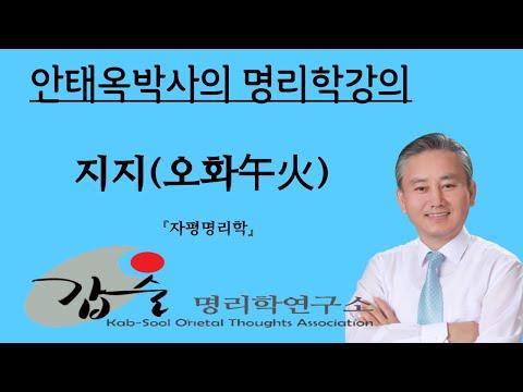갑술명리학  지지(오화)