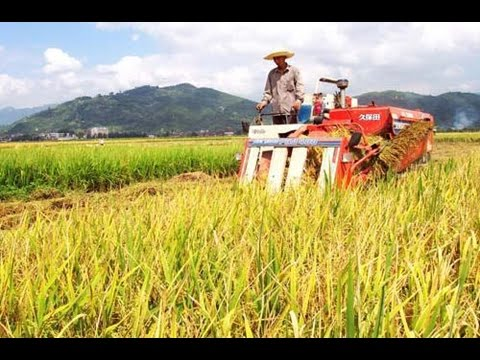 China to modernize, restructure agriculture sector
