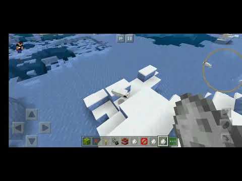 Verwirrter Eisbär Baby In Minecraft