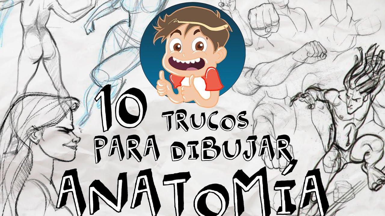 Los DaniDibus | 10 TRUCOS PARA DIBUJAR ANATOMÍA - YouTube