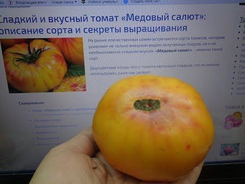 ОЧЕНЬ СЛАДКИЙ ТОМАТ МЕДОВЫЙ САЛЮТ. Ольга Чернова.