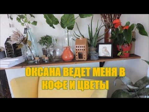 """Влог с Оксаной:  """"Кофе и цветы"""" в Тюмени"""