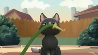 Мяуканье кошки (2009) Короткометражный мультфильм