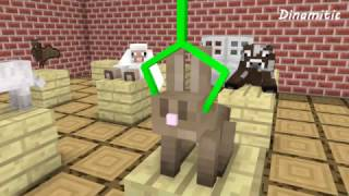 Monster School: Animal Brain - Minecraft Animation