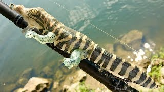 Making a Baby Alligator Lure