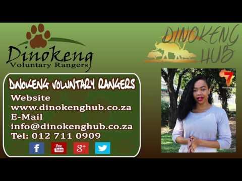 Dinokeng Voluntary Rangers  - Dinokeng Hub