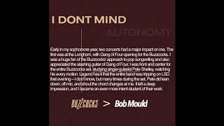 Bob Mould - I Don't Mind (Buzzcocks Cover)