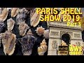 Thousands of seashells ! Paris Shell Show 2019 (France) Sea shell Collection (Part 3)