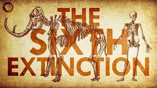 Are We Living In the Sixth Extinction?