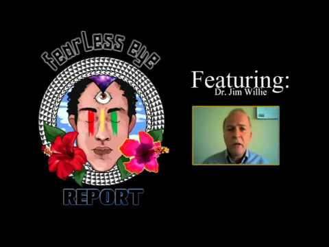 Fearless Eye Report Episode 1: Dr Jim Willie