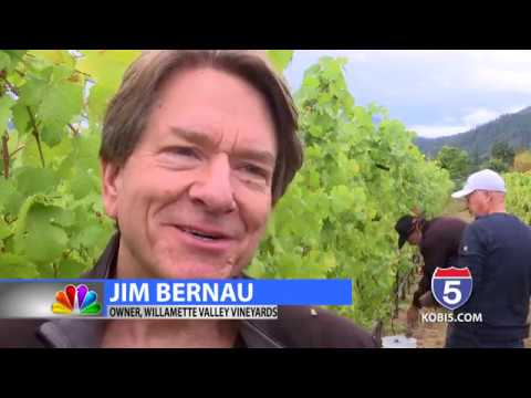 Wineries and growers come together to support Southern Oregon wine industry