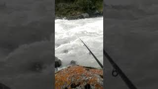рыбалка в Горная река на фарель