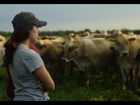 How Grass-fed Can Save The Family Dairy - A Pasture Project Webinar