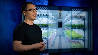 Are indoor vertical farms the future of agriculture? | Stuart Oda