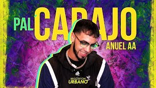 Video Pal Carajo Anuel AA