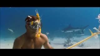 Добро пожаловать в рай ! 2005 год  ( купание с акулами )