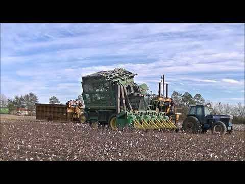 DAVIS FARMS 2017 COTTON HARVEST 3 STALK CHOPPING AND MODULE BUILDING