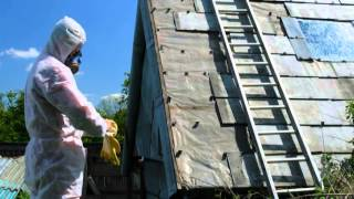 Mold Removal | East Hampton, CT - AA Asbestos Abatement LLC.