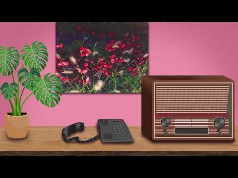 kerman - no reply (Lyric Video) feat. AR, Charlie Swisher & petal boy