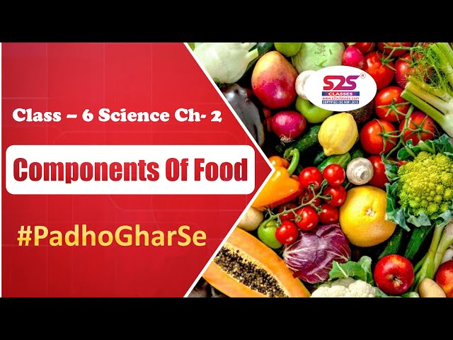 Class 6 Science - Components of Food | Sprint for Final Exams | NCERT Solutions for Class 6 Science