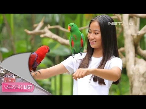 Weekend List-Bali Bird Park