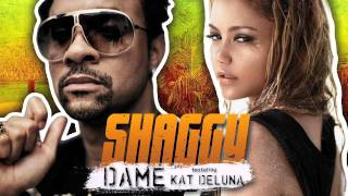 Watch Shaggy Dame video