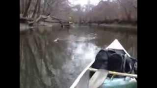 Trial run canoeing Ohio