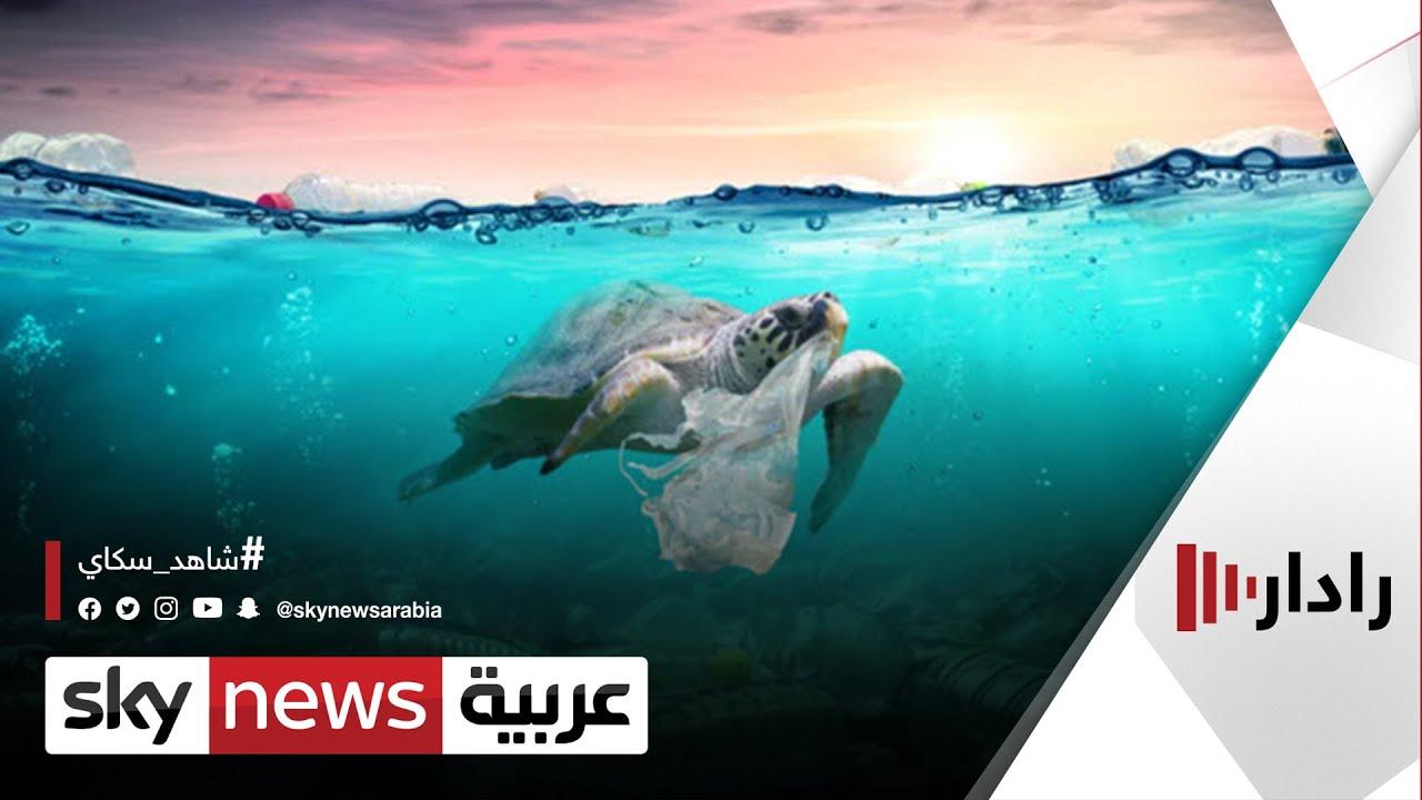 نفايات البلاستيك تهدد حياة الحيوانات البحرية | #رادار  - نشر قبل 19 دقيقة