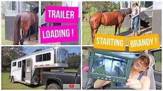 Trailer Loading & Trailering | Starting Brandy Pt.3  + A Trailer Camera?