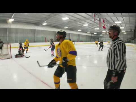 6/30/2016 Skategoats vs Peter North Stars