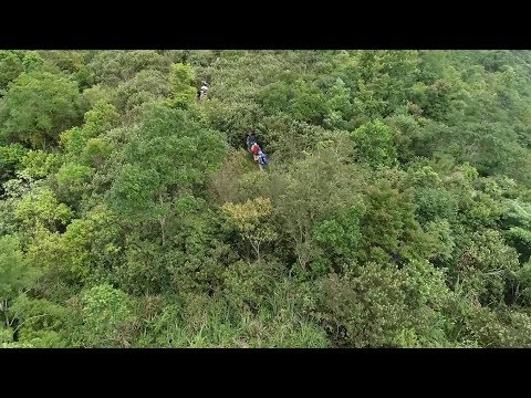 China's Green Push: Crossing Tropical Rainforest In Hainan
