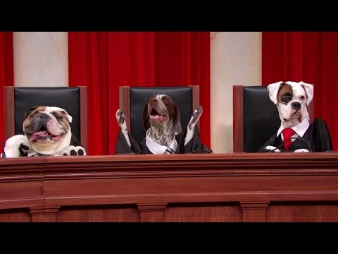 National Federation of Independent Businesses v. Sebelius: Oral Argument - March 26, 2012 (Part 1)