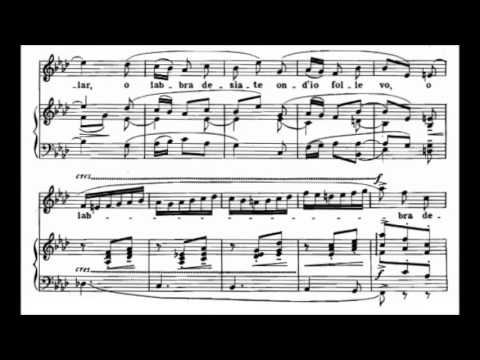 Stefano Donaudy - 4 Songs for Voice and Piano