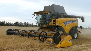 New Holland CX8.90 & CR9090 Combines Harvesting Barley in The Summer Time | DK Agriculture