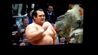 琴奨菊、難敵の栃煌山を退ける! 大相撲平成28年春場所 Sumo Kotoshogik...