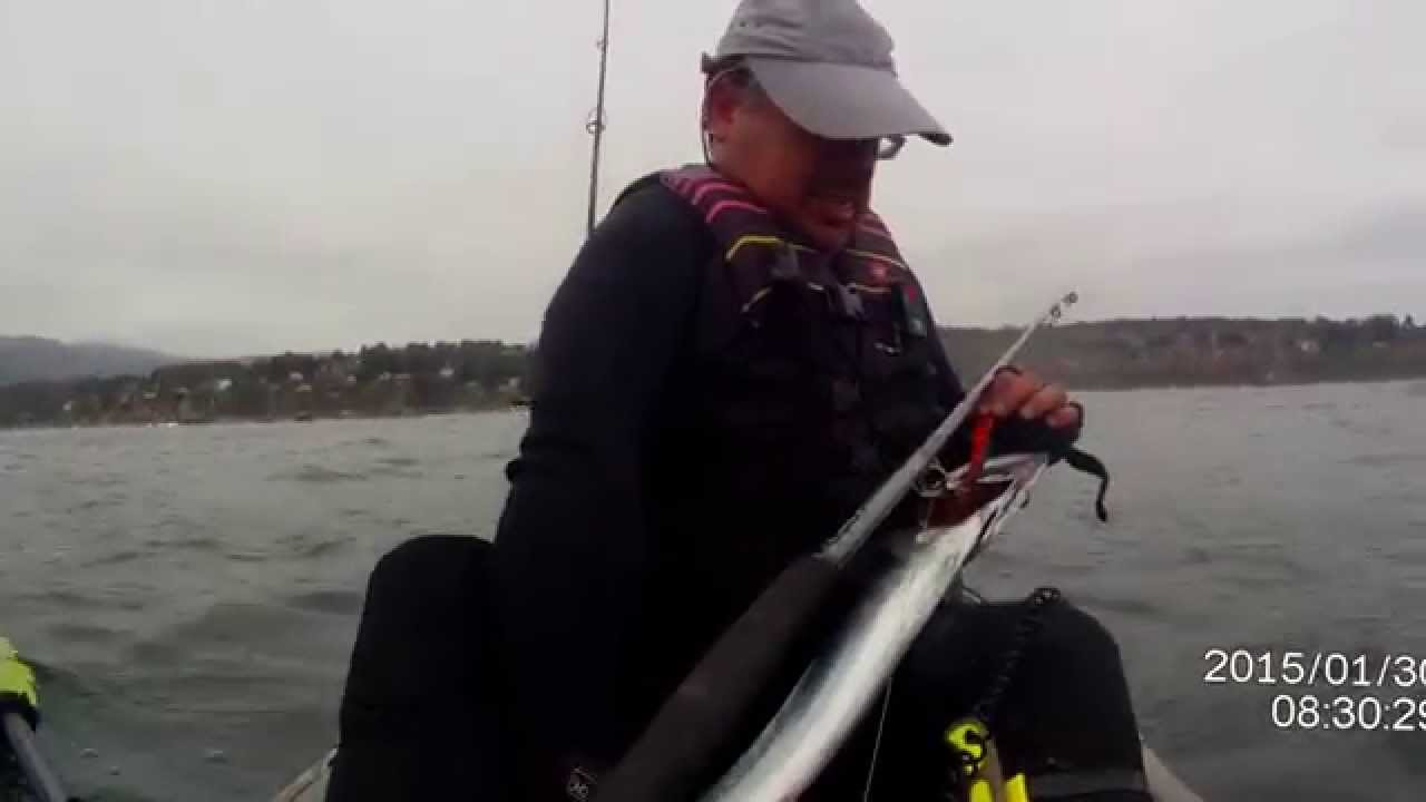 Kayak fishing chile pescando sierras en quintay youtube for Fishing license for disabled person