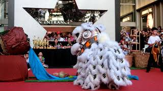 Publication Date: 2020-01-01   Video Title: 小學傳統南獅器材舞獅比賽