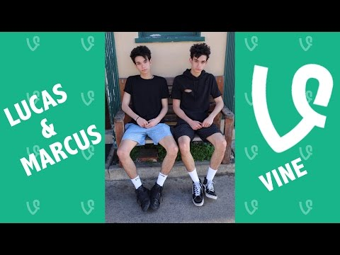 Lucas and Marcus NEW Vines 2016 - Vine Compilation