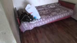 видео Как снять квартиру в Мариуполе