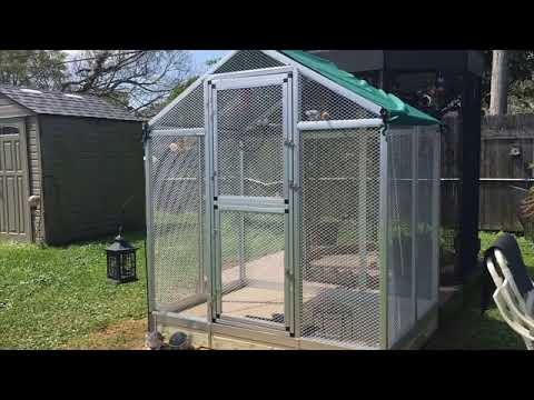 How To Build An Indoor Aviary For Parrots