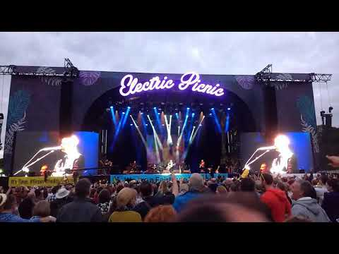 My Lovely Horse   Divine Comedy at Electric Picnic Father Ted Eurovision Song