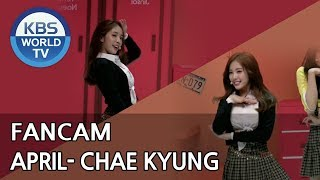 [FOCUSED] APRIL's Chae Kyung - Oh! my mistake [Music Bank / ...