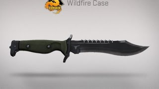 NEW KNIFE OPERATION WILDFIRE SKIN REVIEW, AK-47, M4-A4, BOWIE KNIFE!