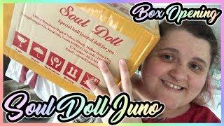 Soul Doll Kid Juno BJD Unboxing | dxgirly likes BJDs